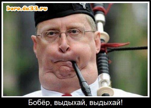 11235_boro.da33.ru.jpg